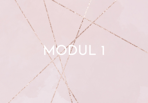 ACT online - modul 1
