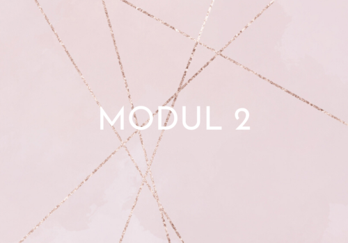 ACT online - modul 2